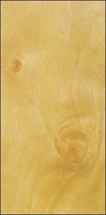 bois de bouleau de la famille des b tulac es du nom betula. Black Bedroom Furniture Sets. Home Design Ideas